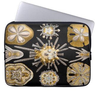 Ernst Haeckel Echinidea Sea Urchins Laptop Sleeve