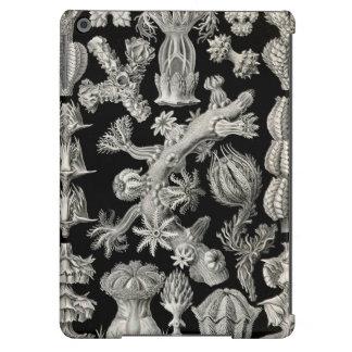 Ernst Haeckel Gorgonia iPad Air Cover
