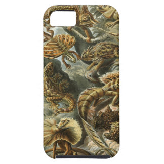 Ernst Haeckel - Lacertilia iPhone 5 Cover