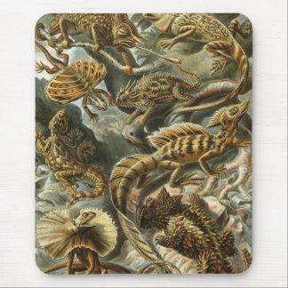 Ernst Haeckel - Lacertilia Mouse Mat