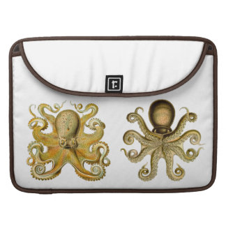 Ernst Haeckel Octopus laptop sleeve