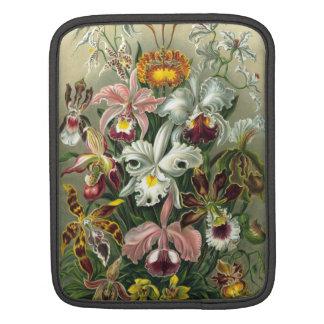 Ernst Haeckel - Orchidae iPad Sleeve