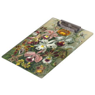 Ernst Haeckel Orchids, Vintage Rainforest Flowers Clipboard