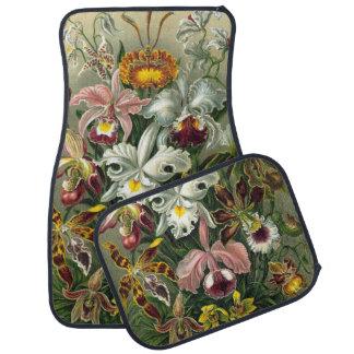 Ernst Haeckel Orchids, Vintage Rainforest Flowers Floor Mat