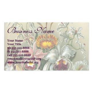 Ernst Haeckel Orchids, Vintage Rainforest Flowers Pack Of Standard Business Cards