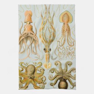 Ernst Haeckel's Gamochonia Tea Towel