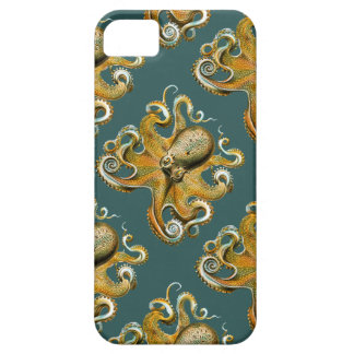 Ernst Haeckel's Octopus iPhone 5 Cover
