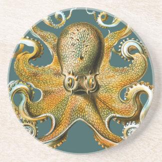 Ernst Haeckel's Octopus Sandstone Coaster