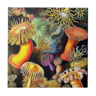 Ernst Haeckel Sea Anemones Vintage Art Tile