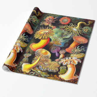 Ernst Haeckel Sea Anemones Vintage Art Wrapping Paper