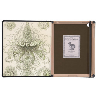 Ernst Haeckel Siphonophorae Case For iPad