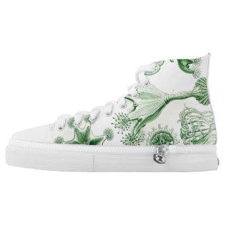 Ernst Haeckel Stauromedusae Shoes