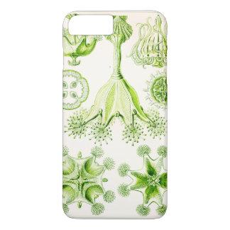 Ernst Haeckel Stauromedusae Stalked Jellyfishes iPhone 7 Plus Case