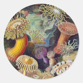 Ernst Haeckel Round Sticker