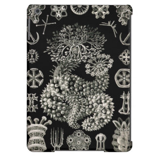 Ernst Haeckel Thuroidea Sea Cucumbers iPad Air Covers