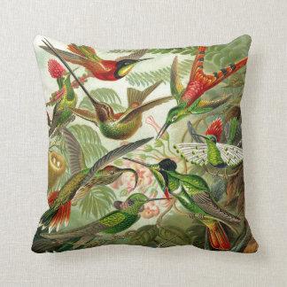 Ernst Haeckel Trochilidae Hummingbird Cushion