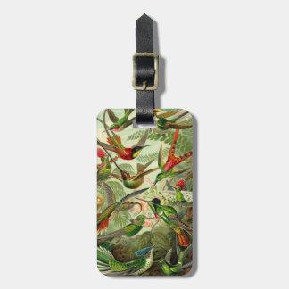 Ernst Haeckel Trochilidae Hummingbird Tags For Luggage