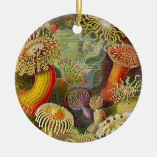Ernst Haeckel's Actinae Ocean Life Round Ceramic Decoration