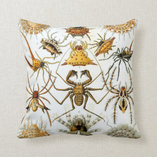 Ernst Haeckel's Arachnida Spiders Throw Pillow