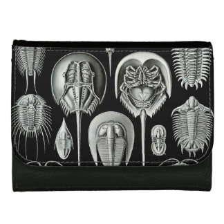 Ernst Haeckel's Aspidonia Leather Wallet