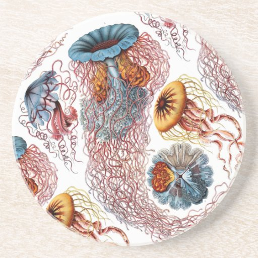 Ernst Haeckel's Disco Medusae Beverage Coasters