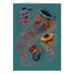 Ernst Haeckel's Disco Medusae Greeting Card