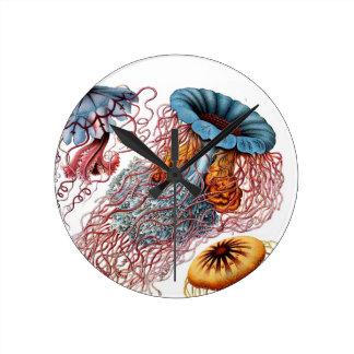 Ernst Haeckel's Disco Medusae Round Clock