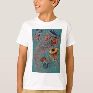 Ernst Haeckel's Disco Medusae T-Shirt