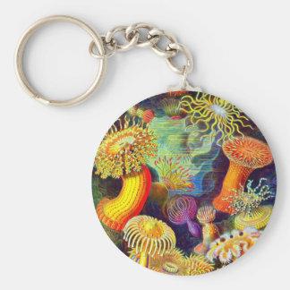 Ernst Haeckel's Sea Anemones Basic Round Button Key Ring