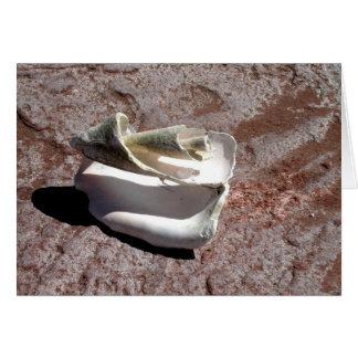 Eroded shell, Los Gatos anchorage Greeting Card