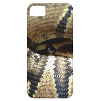 Eros says Peek-A-Boo iPhone 5 Covers