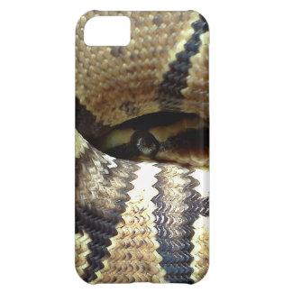 Eros says Peek-A-Boo iPhone 5C Case