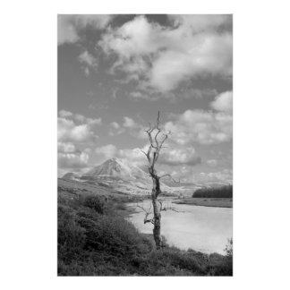 Errigal mountains and countryside in county Donega Poster