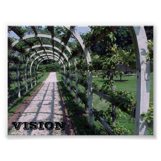 Espalier Apple Tree - Vision Poster