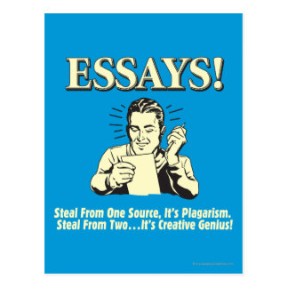 essay stolen