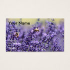Essential Oil Business Cards with Lavender