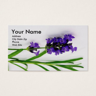 Essential Oil Business Cards with Lavender2