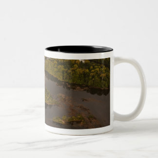 Essequibo River, longest river in Guyana, and 4 Two-Tone Coffee Mug