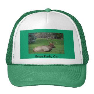 Estes Park, Co. Mesh Hats