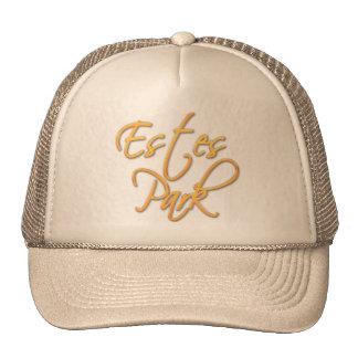 Estes Park Mesh Hat