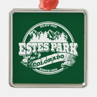 Estes Park Old Circle Green Silver-Colored Square Decoration