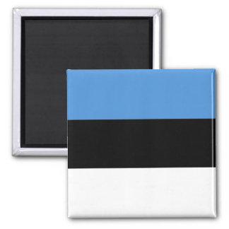 Estonia Flag EE Magnet