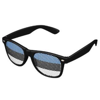 Estonia Flag Retro Sunglasses