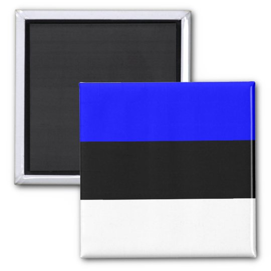Estonia High quality Flag Magnet