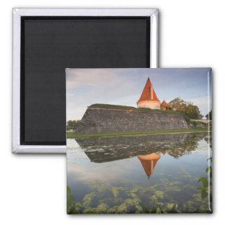 Estonia, Western Estonia Islands, Saaremaa Magnet