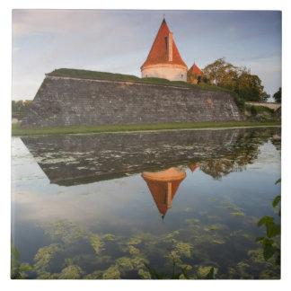 Estonia, Western Estonia Islands, Saaremaa Tile