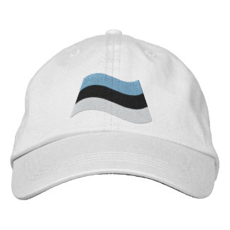 Estonian Flag Embroidered Hat