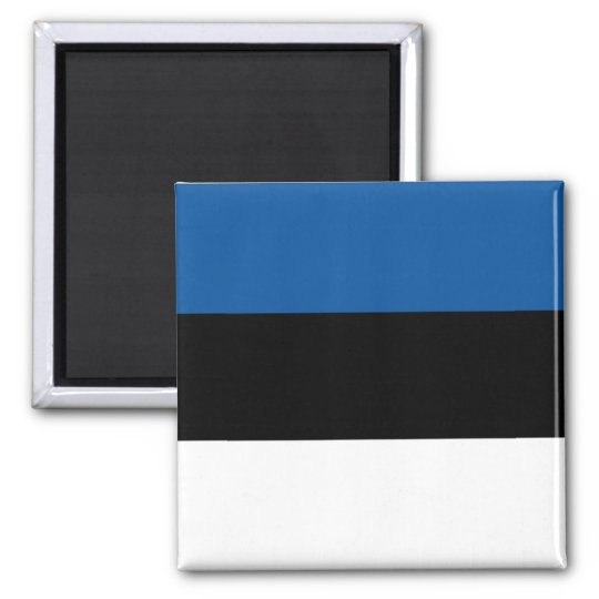 Estonian Flag Square Magnet