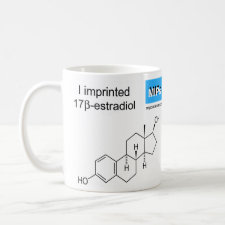 mug featuring the template Estradiol