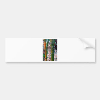 Etched Bamboo Bumper Sticker